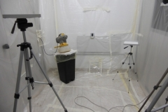 EFFICACY OF A NEBULIZED INSECTICIDE IN A 20 M3 ROOM