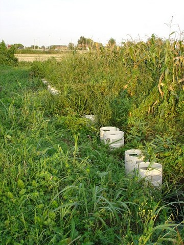 LARVICIDE EFFICACY AGAINST MOSQUITOES IN FIELD CONDITIONS