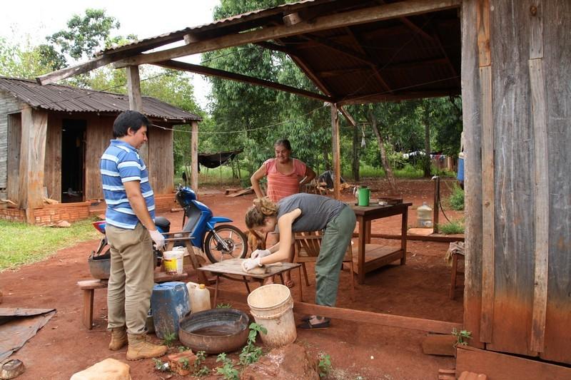 FLEAS AND TICKS FIELD STUDY PUERTO IGUAZU ARGENTINA 2017
